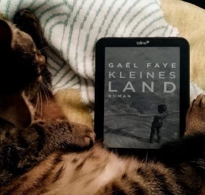 Kleines Land // Gael Faye